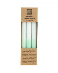 Kaarsen ombre wit groen