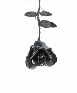 roos-van-tin-voorkant